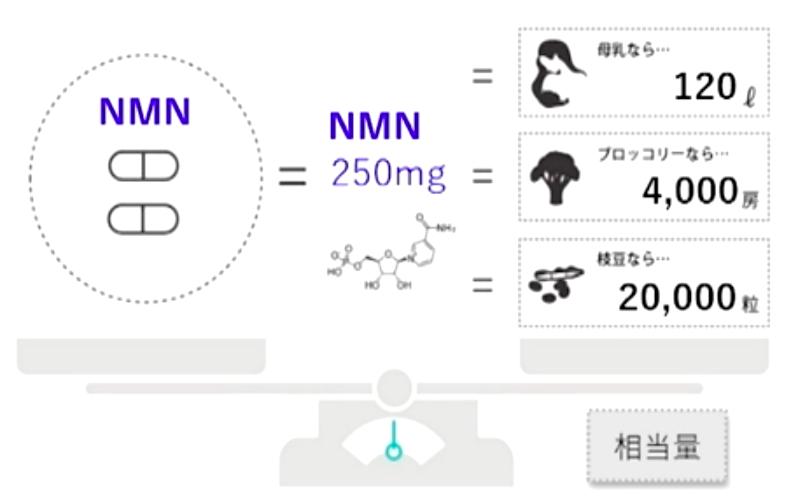 NMN相当量20208