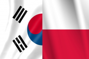 ポーランドと韓国、世界史により大きな影響を与えたのはどちらでしょうか?[韓国ネット民]キャンドルデモなど、現代以降は大韓民国です