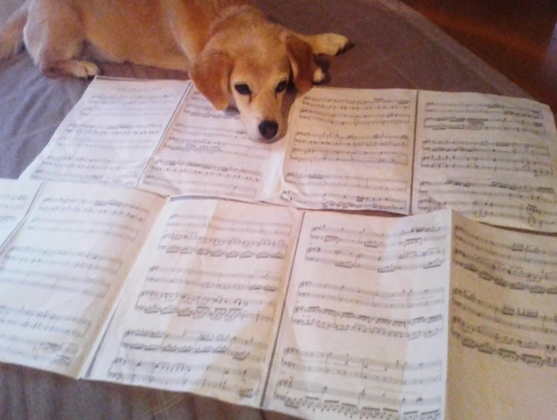 モーツァルト:ピアノ協奏曲23番楽譜とノエル