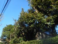 200315-03.jpg