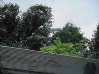 200424-10.jpg