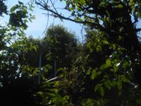 200501-01.jpg