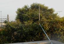 200501-03.jpg