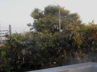 200502-03.jpg