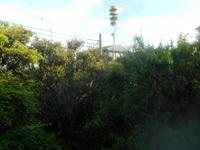 200504-04.jpg