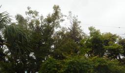 200506-03.jpg