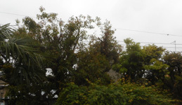 200506-04.jpg