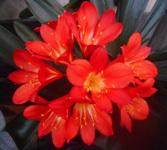 200506-05.jpg