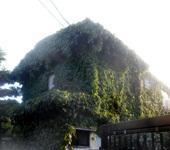200507-05.jpg