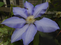 200510-04.jpg