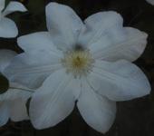 200511-01.jpg