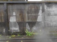 200516-01.jpg