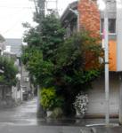 200516-11.jpg