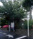 200521-11.jpg