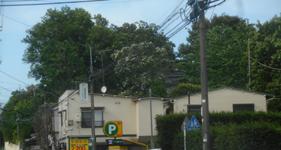 200530-07.jpg