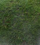 200531-05.jpg