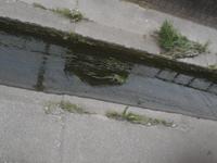 200627-10.jpg