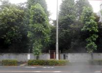 200703-02.jpg