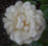 200725-07.jpg