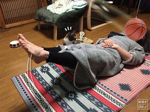 20200320_筋トレ妨害猫3