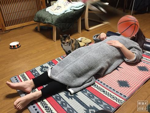 20200320_筋トレ妨害猫1