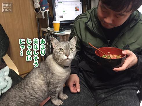 20200410_ネギトロ丼8