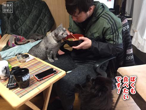 20200410_ネギトロ丼5