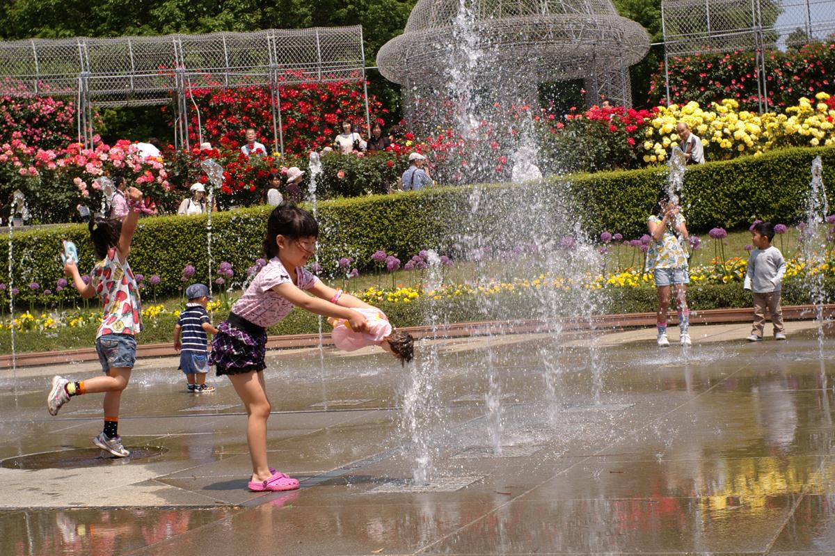 小田原スナップ,フラワーガーデンの踊る噴水