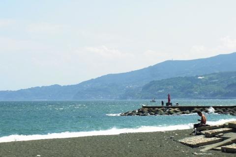 6月の御幸の浜海岸