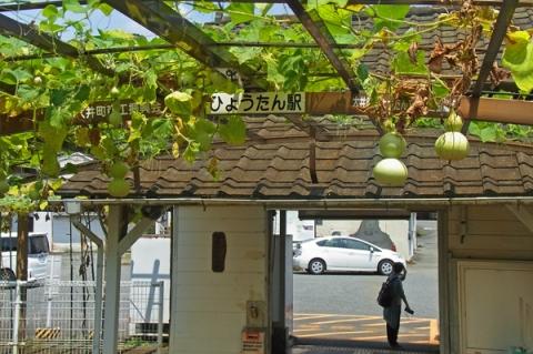 ひょうたん駅上大井駅のひょうたん棚