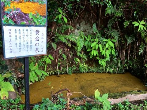 白笹稲荷神社の黄金の泉