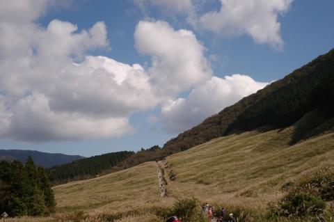 箱根仙石原箱根仙石原すすき草原