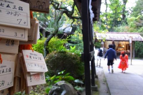 二宮神社の絵馬と七五三風景