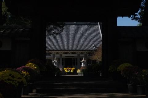11月の小田原総世寺