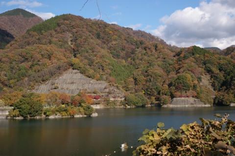 11月の丹沢湖