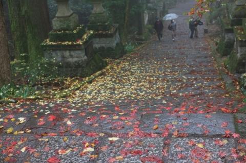 最乗寺の落ち葉