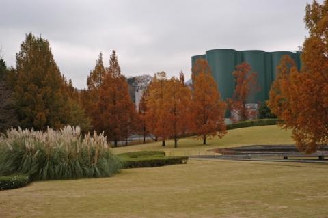 アサヒビール神奈川工場のメタセコイアとパンパスグラス