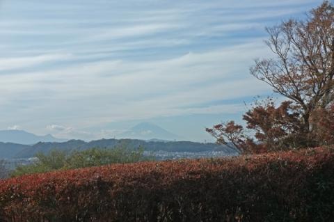 城山公園から薄曇りの富士山