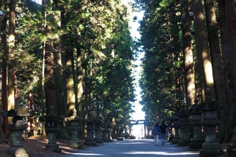 北口本宮富士浅間神社の参道