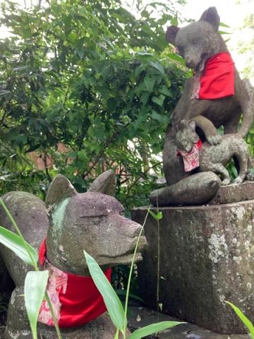 稲荷神社の親子狐