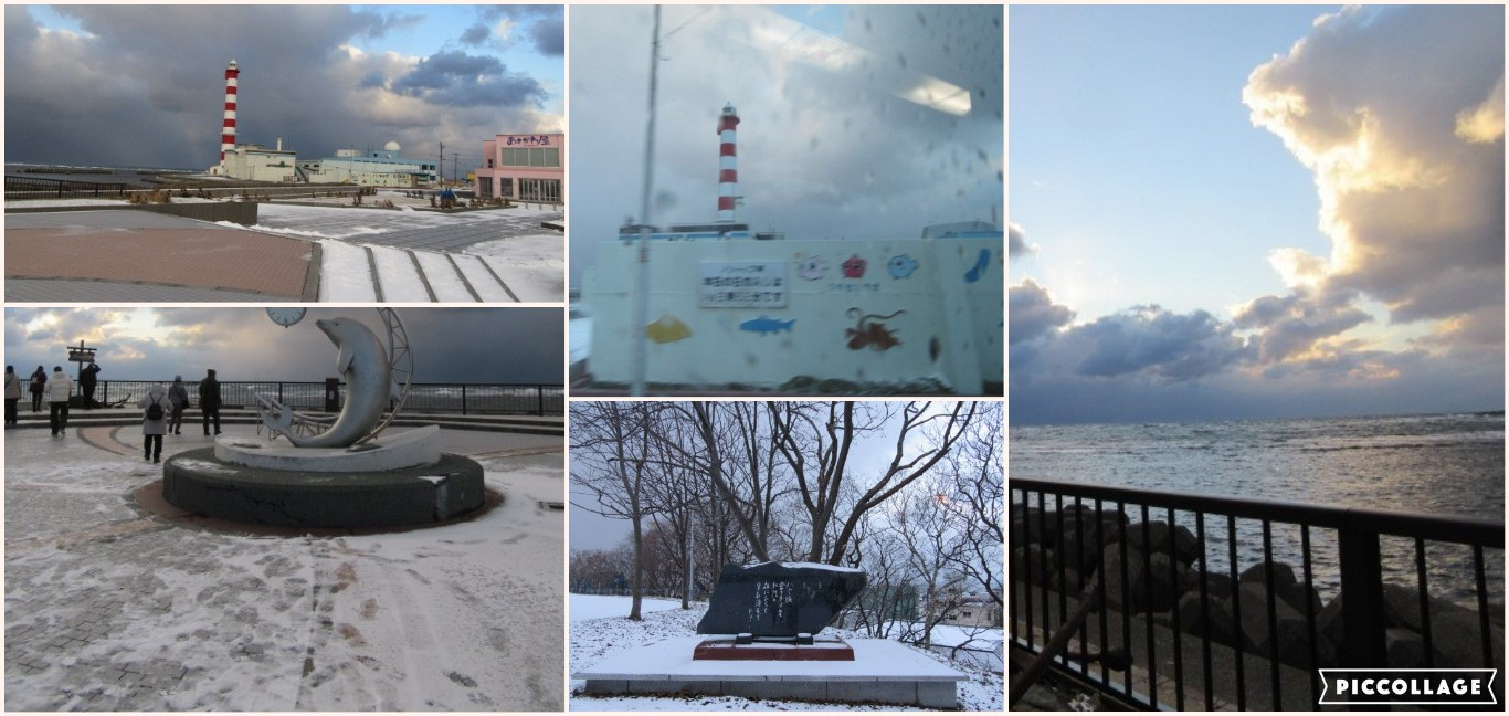 Collage 2020-12-24 09_57_57