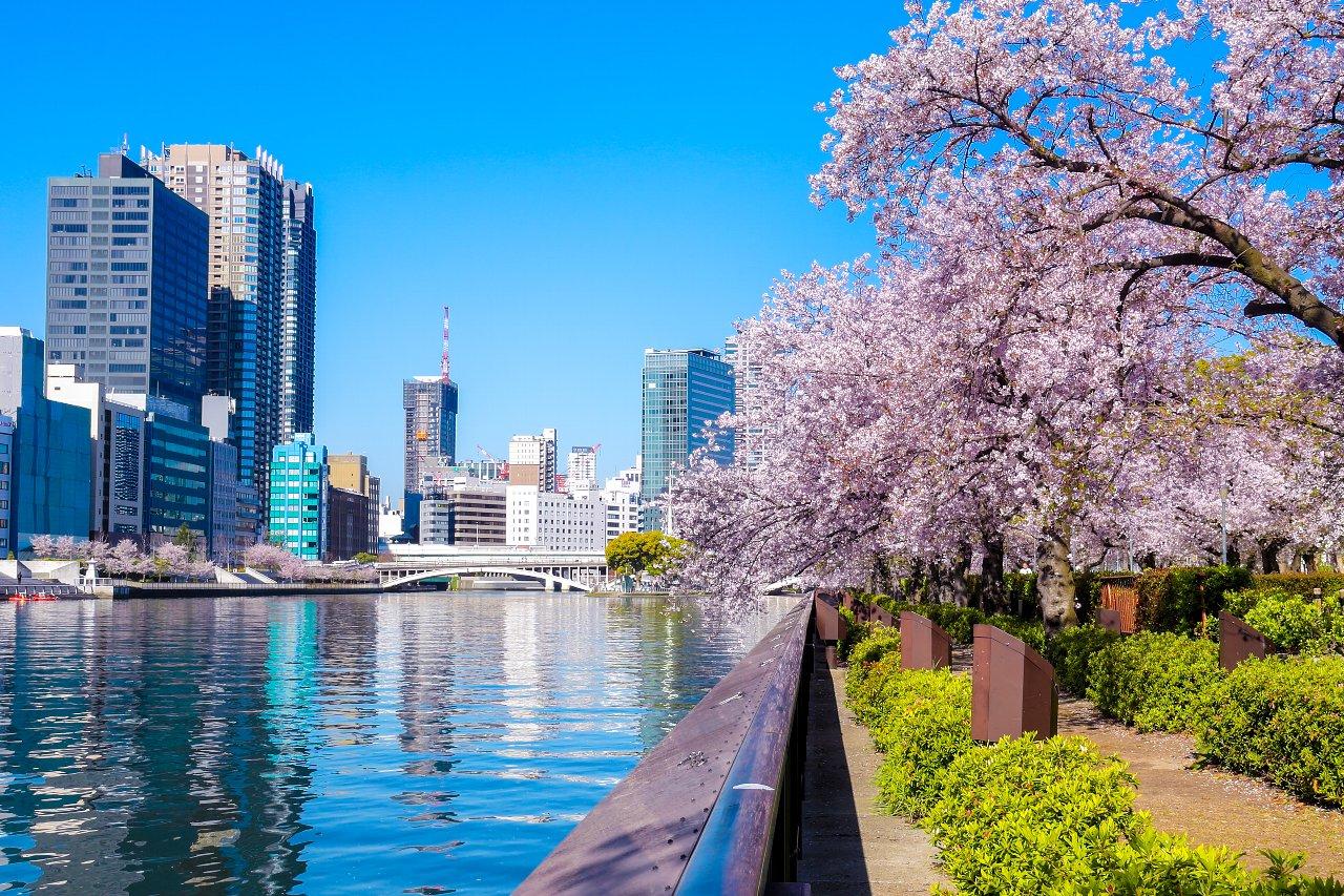 190413 大阪大川 桜