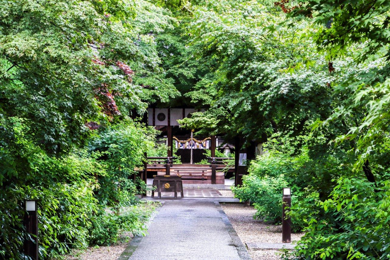 200704 梨木神社 青紅葉_03