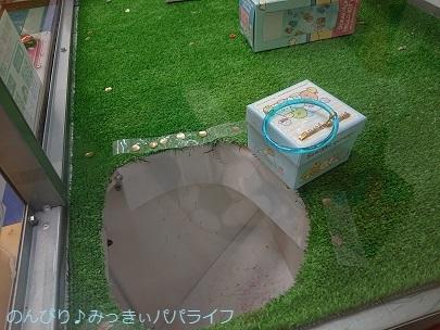 bukatsudoshirokuma08.jpg
