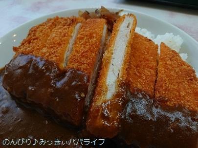 jumbochickenkatsucurry05.jpg
