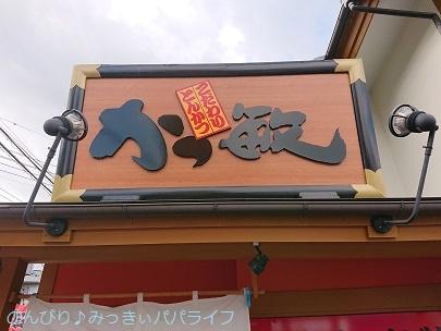 katsutoshi201001.jpg