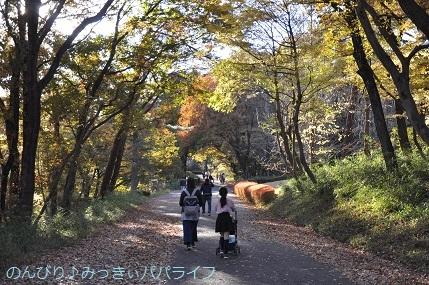momijiminaito2020029.jpg