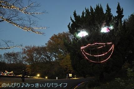 momijiminaito2020043.jpg