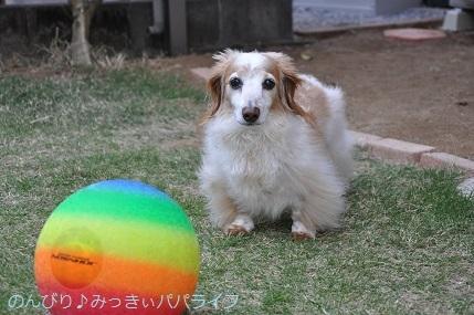 musume9sai05.jpg