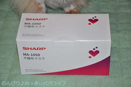 sharpmask02.jpg